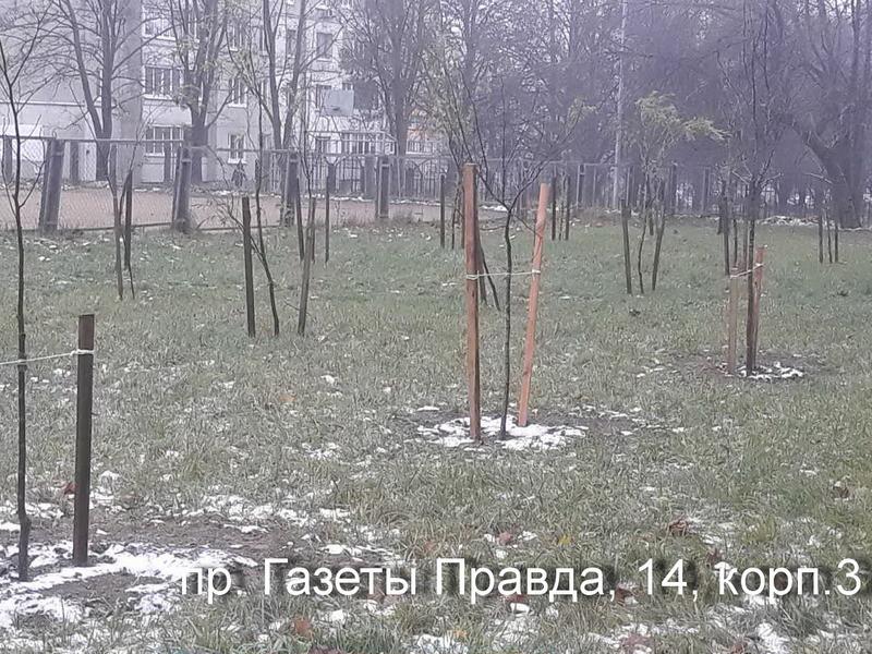 проспект газеты правда 14/3