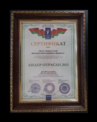 сертификат 2013 год
